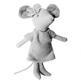 Mice, their clothes & accessories